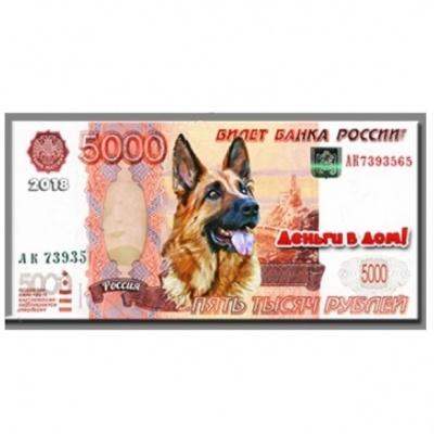 Счастливая купюра 5 000 руб.