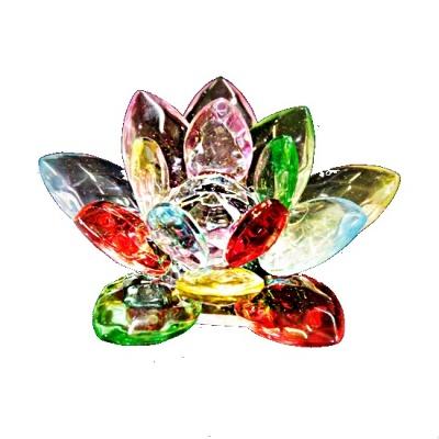 Лотос разноцветный фен-шуй